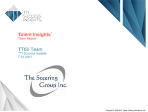 Talent Insights Team Report